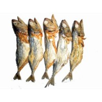 Only Dry Fish (BANGADE)-15pcs*